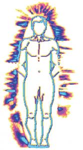 fig-1-pekka